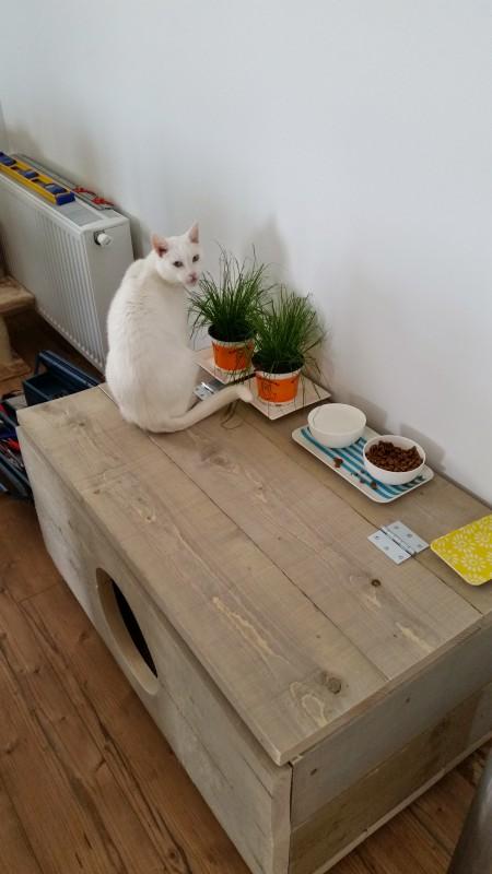 Diy Kattenbak Ombouw Laurakuipernl