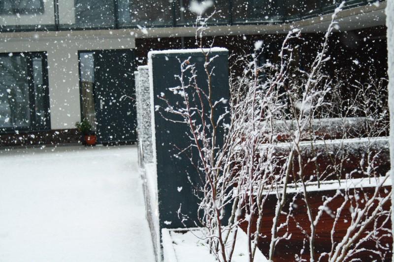 I Love Winter. Hek binnenplaats sneeuw