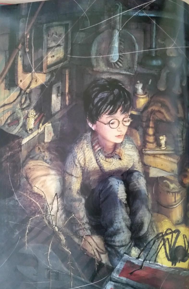 Harry Potter in zijn kast