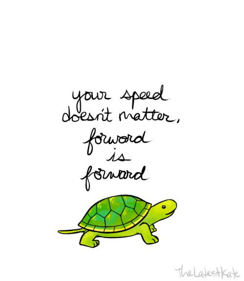 Monday Inspiration Turtle