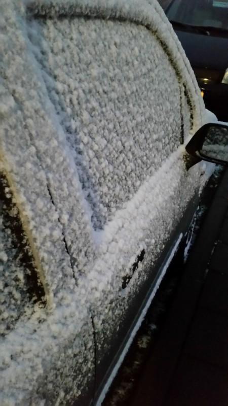 Daily Snaps #1 Sneeuw