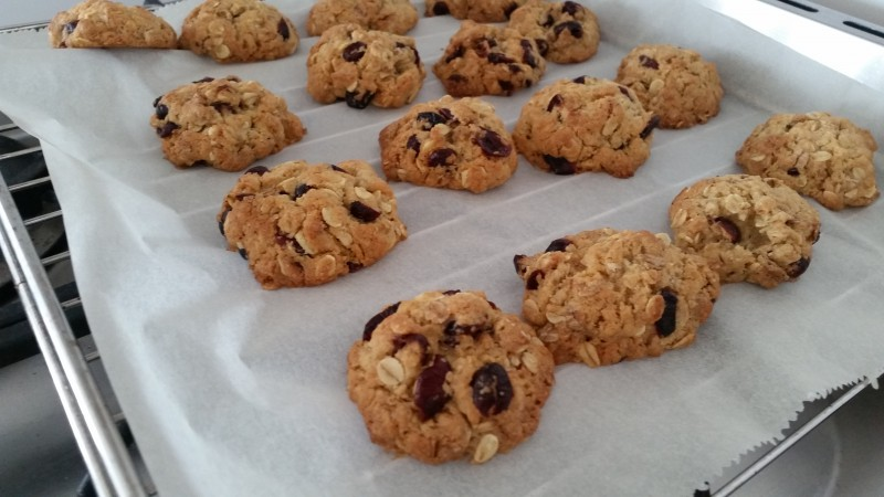 Make & Bake Cranberry koekjes