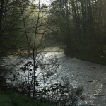 Rivier Camping Wesertal