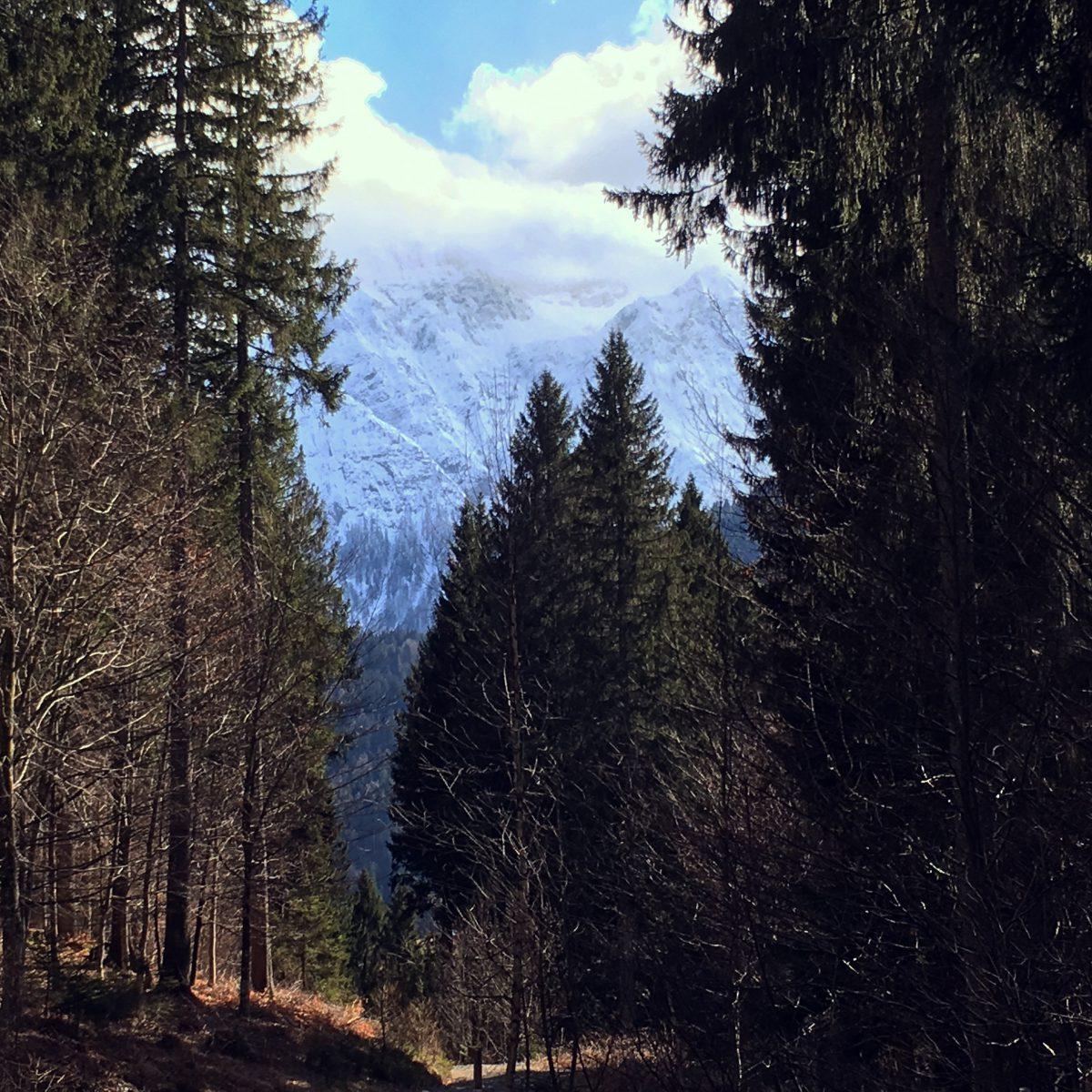 Travel: Oostenrijk