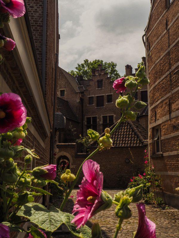 Karmelietessen - Citytrip Antwerpen
