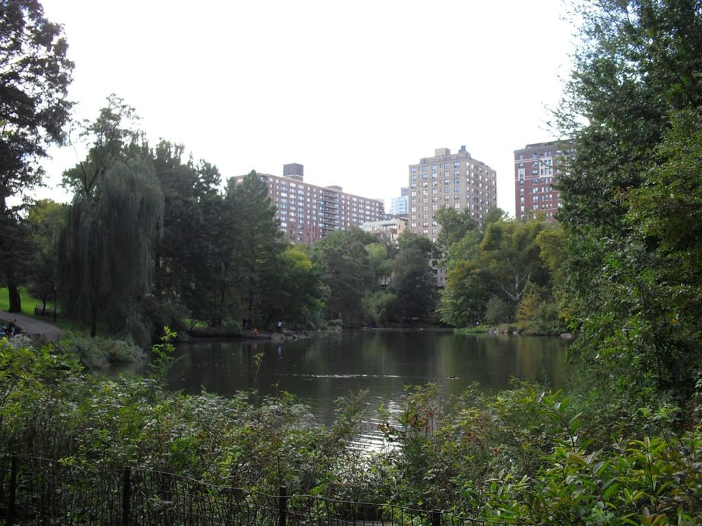 I cannot say pap anymore - Central park