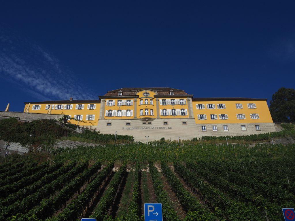 Kasteel aan de voet van een wijngaard bij de Bodensee