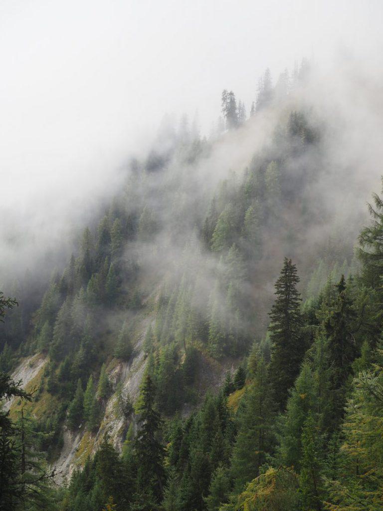 Mist boven de boomtoppen van het bos bij Serfaus