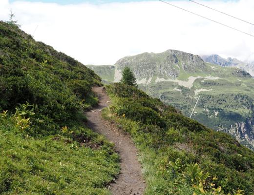 A life on our planet - Wandelpad in de bergen bij Ischgl Oostenrijk