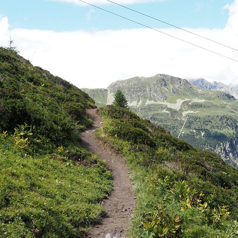 A life on our planet - Genieten van deze planeet! Wandelpad in Ischgl Oostenrijk