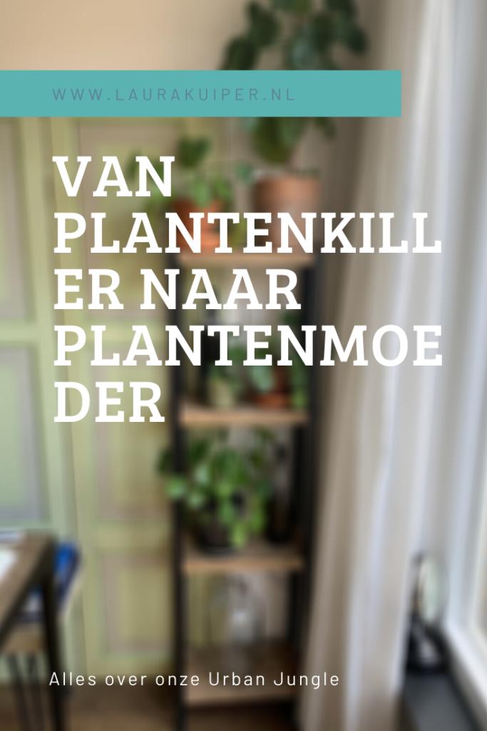 Van plantenkiller naar plantenmoeder - Alles over onze Urban Jungle